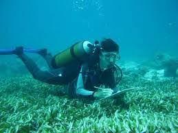 Biologie aquatique pour les nuls - darchevillepatrick.info