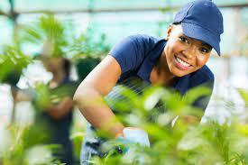 Listes des emplois   Emploi agricole
